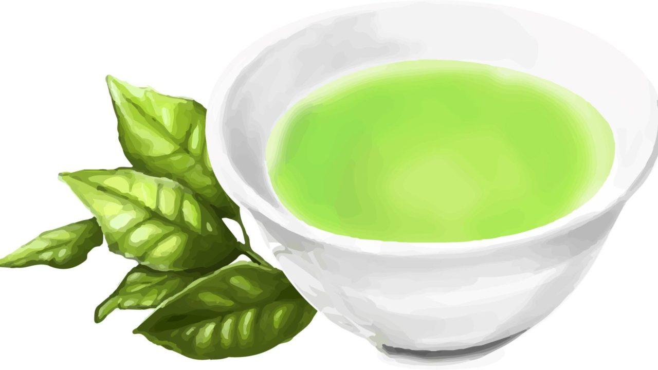 お茶 有機栽培 無農薬