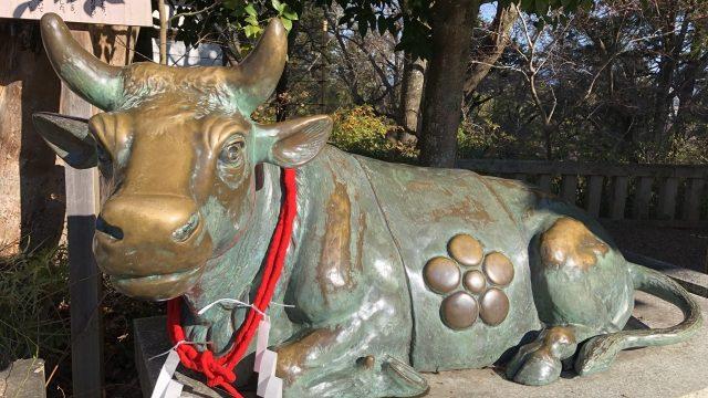 丑年 神社 名古屋