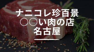 ナニコレ珍百景 名古屋 肉