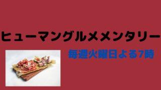 ヒューマングルメ 茨木 天丼